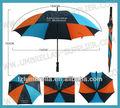 paraguas de la estructura
