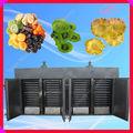 frutas vegetales deshidratados // deshidratador de alimentos industrial / deshidratador industrial