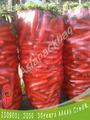 rojo transparente pp sacos bolsa para zanahoria