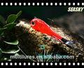 seasky libre muestras de pesca señuelo pez cebo caso