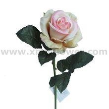 Una flor rosa
