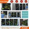 Pared Vivir jardín vertical, fieltro jardin vertical