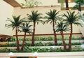 Mini palmeras artificiales, decorativos de metal de los árboles de palma, de plástico del árbol de palma