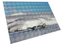vinil laminador 3D,laminador 3d para aplicacion en frio de uso exclusivo en interiores,plastificado 3D en graficos impresos