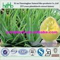 ISO9001 98% aloína extracto de aloe vera