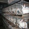 Criação de coelhos gaiolas/usado gaiolas de coelho para venda