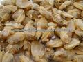 carne congelada clam