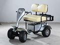 2 plazas mini carro de golf para la venta de carros de golf fábrica en China (AX-A3-5)