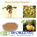 100% orgánica natural extracto de maca en polvo, la maca extracto de raíz de producto del sexo( mejorar el rendimiento sexual)