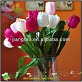 Nuevos nombres de flores colección y fotos