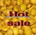 melhor castanha fresca para a venda de grande porte chinês castanha descascada