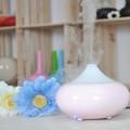 La mayoría popular del regalo con perfumes y fragancias, insectos comestibles