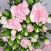 /p-detail/flores%C2%A0cortadas-spray-de-flor-de-clavel-300003687183.html