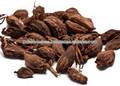cardamomo brown para la exportación
