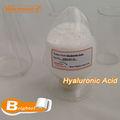 ácido hialurónico(hyaluronic acid)