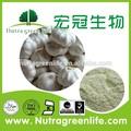 Salida de fábrica de regular la presión arterial de extracto de ajo allium sativum l alicina píldora cápsula 10:1 en polvo