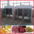 deshidratador de alimentos profesional / deshidratador hongo / planta deshidratadora de hortalizas