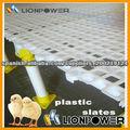 equipos de aves de corral de pizarras de plástico para pollos de engorde