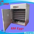 hottest venda ce aprovado automática cheia 24 avestruz incubadora de ovos para venda
