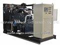 Aprobado de CE para precio de grupo electrógeno de gas natural silencioso de 10kW-300kW