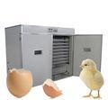 FRD-35 con la incubadora de los huevos del pollo 3520pcs (incubadoras automáticas para los huevos que traman)
