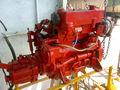 Bukh Diesel Engine