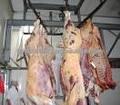 La carne de vacuno de carne/indio la carne de vaca/carne fresca de vacuno de carne/carne fresca de vacuno de carne/