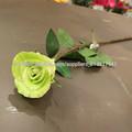 Eva decorativo flor artificial del tacto verdadero de la flor de la flor falsa