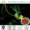 /p-detail/China-fabricante-de-la-medicina-a-base-de-hierbas-90-tribulus-terrestris-saponinas-300002876025.html