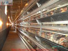 suministros agrícolas de pollo