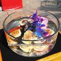 claro grandes peces flor olla de vidrio