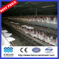 jaula de pollo en China