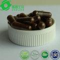 diabetes contra de suplementos a base de hierbas cápsulas de esporas de ganoderma