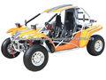 EEC dune buggy( GT650GK-2)