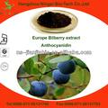 Europa el extracto de arándano/myrtle extracto de arándano antocianinas