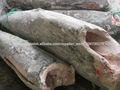 producto alimenticio congelado pescado congelado marlin