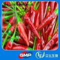 Fábrica GMP Proporcionar Pure capsaicina Natural