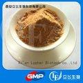Fábrica GMP ofrecemos calidad Tongkat Ali extracto