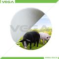 butirato sódico recubierto alimento para cerdos, butirato de sodio recubierto 30%/50%, 90% butirato de sodio ex China fabricante