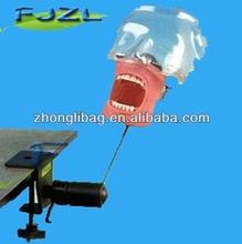 simple maniquí realista/simulador dental/oral maniquí simulador de entrenamiento dental&& montaje cubierta