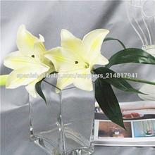 Bienes Flores Touch en los arreglos de diseño