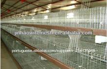 galinha galinheiro para venda