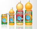 botella PET automática máquina llenadora zumo / jugo que hace la línea de producción