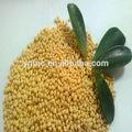 superfosfato simples ssp fertilizantes granulados