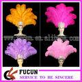 de colores de plumas de avestruz para la decoración de interiores