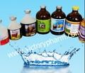 Inyección enrofloxacino 10% farmacéutico veterinario