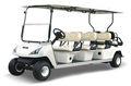 8 asientos carrito de golf eléctrico con el certificado del ce