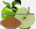 polvo floretina manzana / floretina / floretina 98%