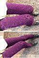 New Sexy da Mulher pleuche ocas Floral Leggings Meias Calças 3 Cores