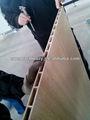 de madera puerta de completar la línea de la línea wpc puerta